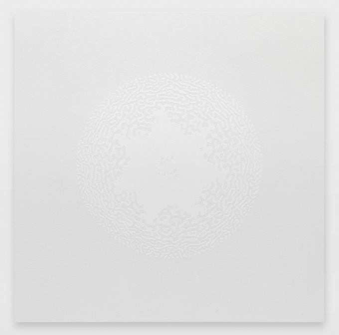Céleste Boursier-Mougenot solidvideo mandalavirus 12, 2017 110 x 110 x 4 cm ©Annik Wetter Courtesy de l'artiste et de la Galerie Xippas / Courtesy of the artist and Xippas Paris